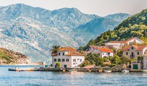 Montenegro-Meer_Palmen